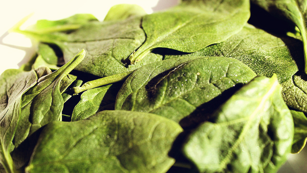 Spinach-Photo-by-desegura89-on-Flickr-used-under-a-Creative-Commons-License